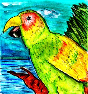 """Parrot"" By C. A. Brown"